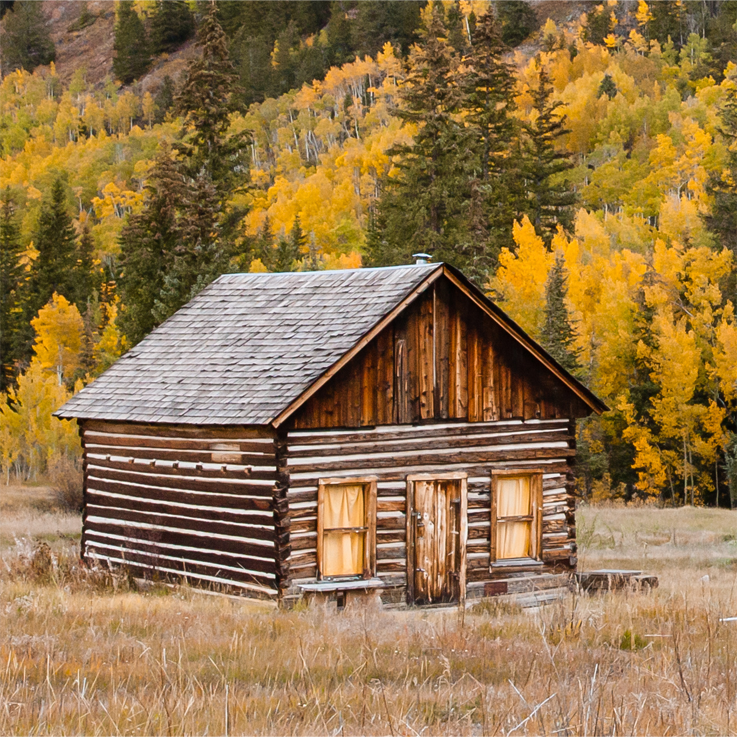 Northern Colorado home inspection services - log cabin